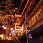 渋温泉外湯大湯から眺める湯本旅館と夜桜