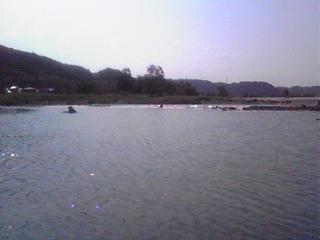 羽村堰の水辺