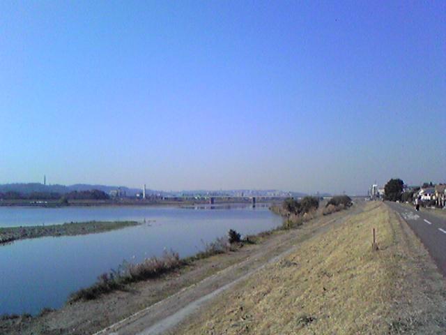 多摩サイ2007