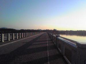 多摩湖の橋