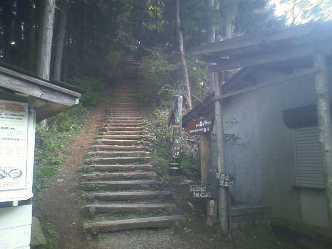 和田峠からの陣馬山登山道