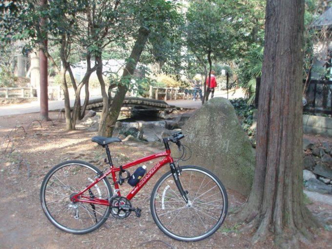 神田川上流端と愛車