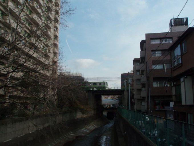 高田馬場神田川の渓谷