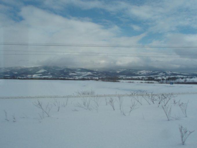冬の青空と雪原