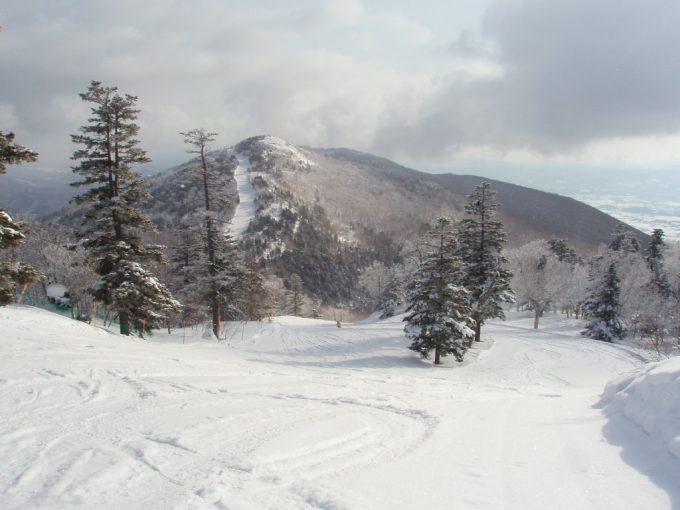 安比高原スキー場西森ゲレンデイージーパウダーコース