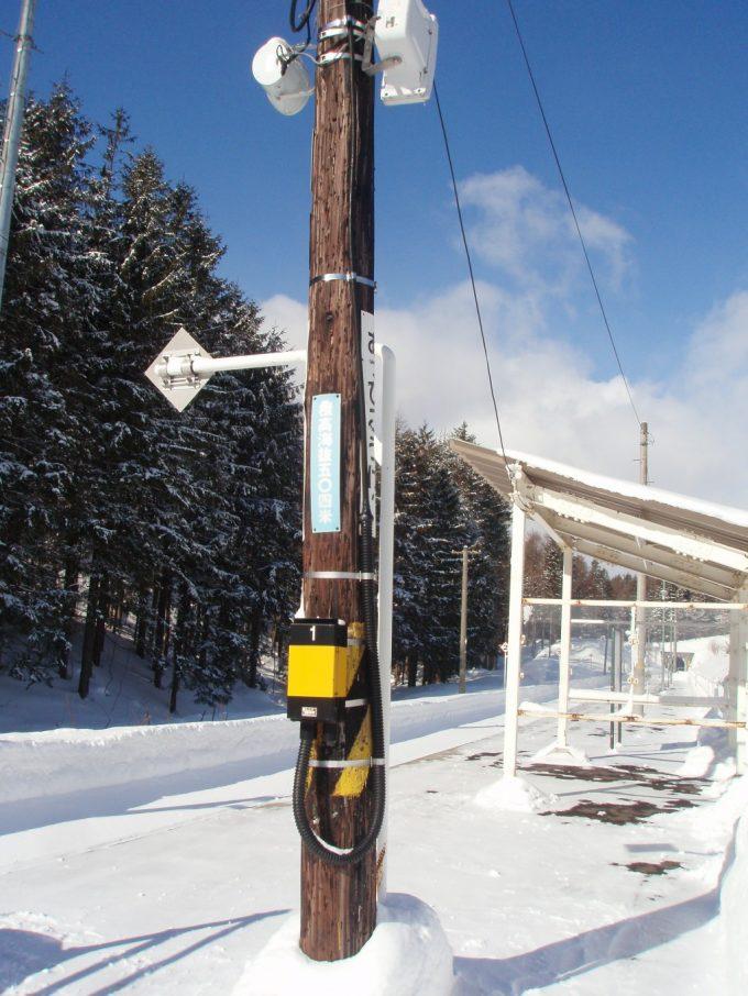 冬晴れの安比高原駅木の電信柱