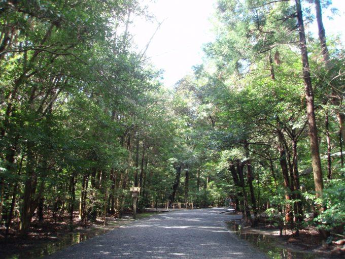 静かな森に包まれた伊勢神宮外宮