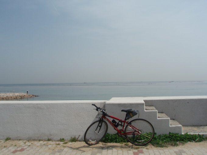東浦の青い海と白い堤防