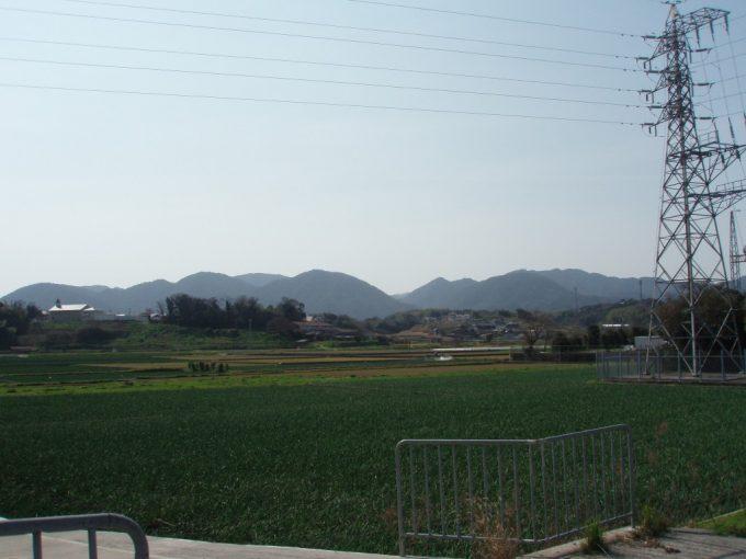 淡路島の玉ねぎ畑