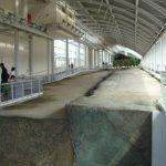 北淡震災記念公園野島断層側面からの様子