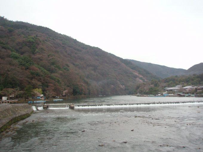 桂川と山腹に咲く山桜