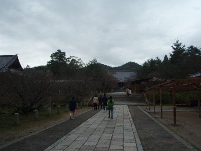 仁和寺金堂への道