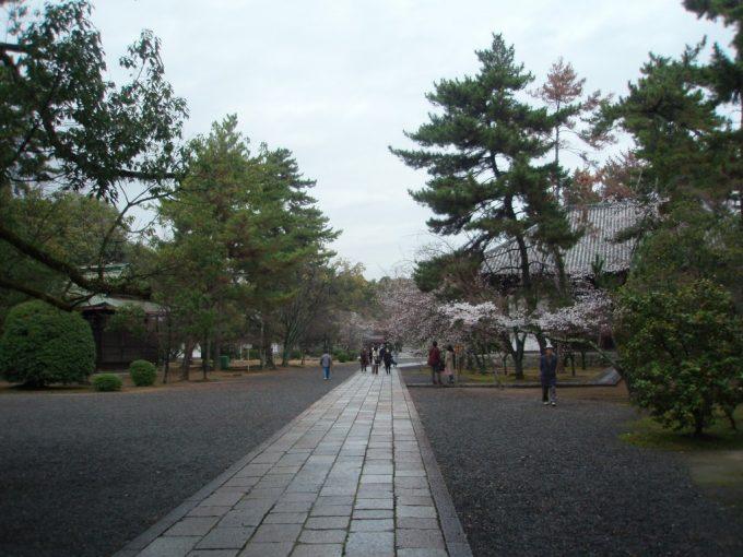 広隆寺境内の道