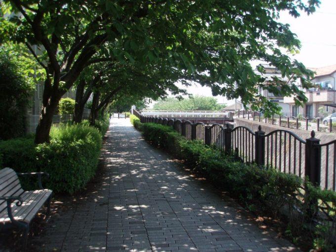 程久保川沿いの道
