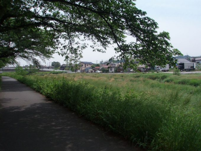 南浅川沿いの道
