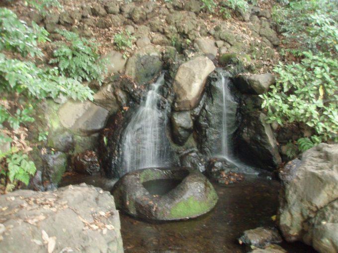 善福寺川水源遅野井の滝