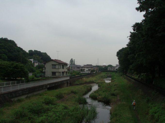 緑を残す野川
