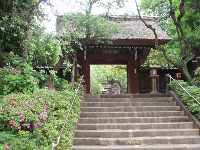 深大寺茅葺の三門