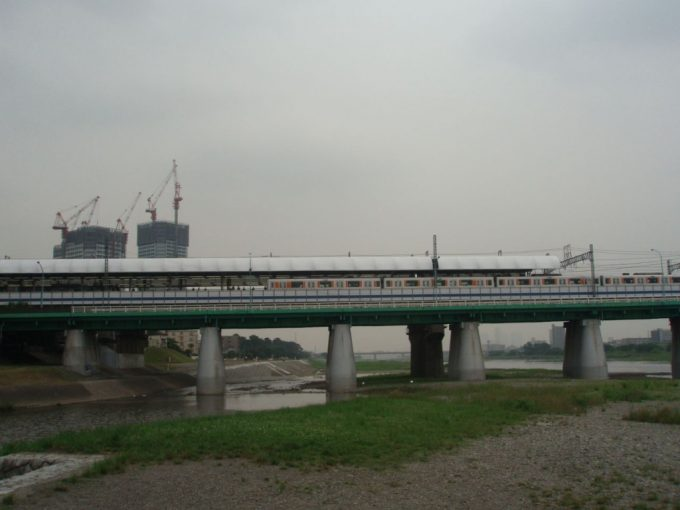 野川河口(多摩川合流点)