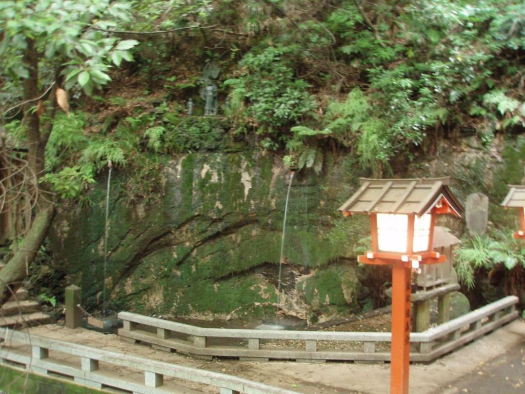 等々力渓谷の滝
