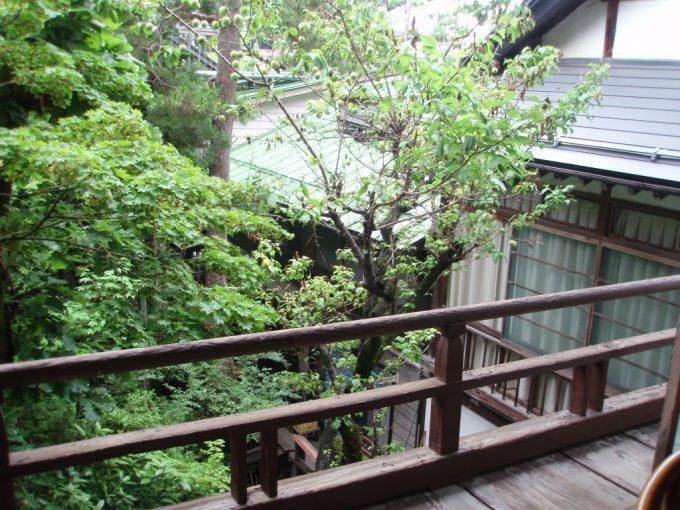 渋湯本旅館古きよき湯上りの風情