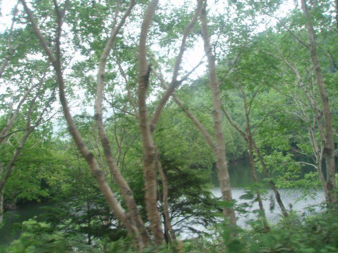 バスから望む志賀高原の池