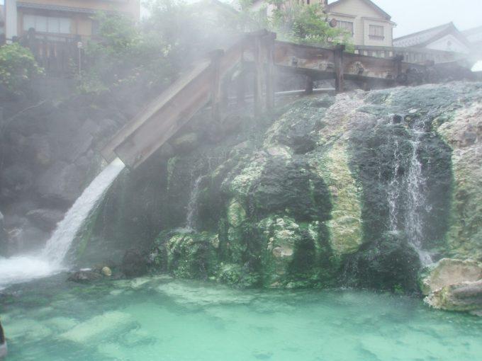 草津湯畑強酸性泉に生える苔