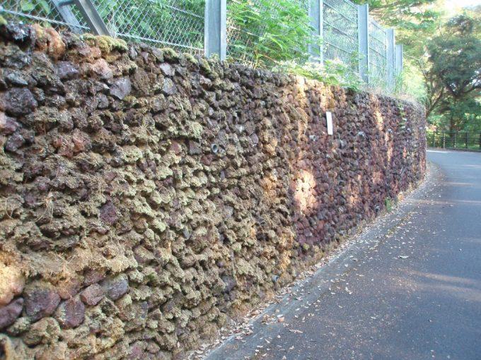 伊豆大島溶岩の石垣