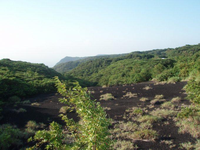 伊豆大島都道からの砂漠