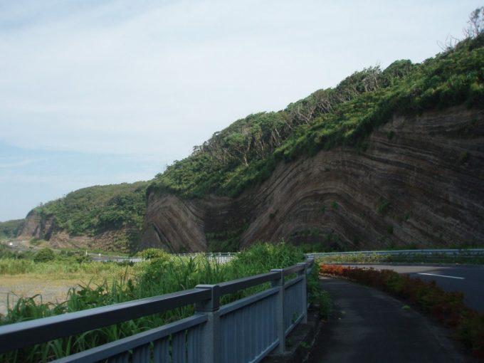 伊豆大島地層切断面