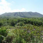 三原山登山道