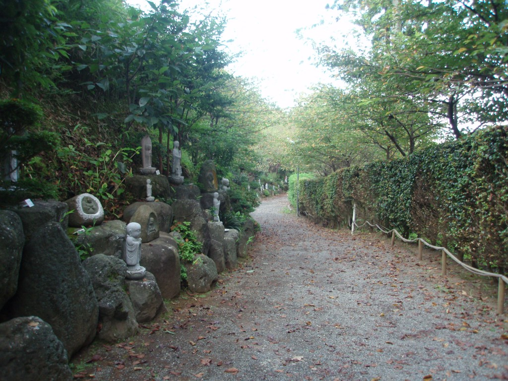 御殿場時之栖裏山への散歩道