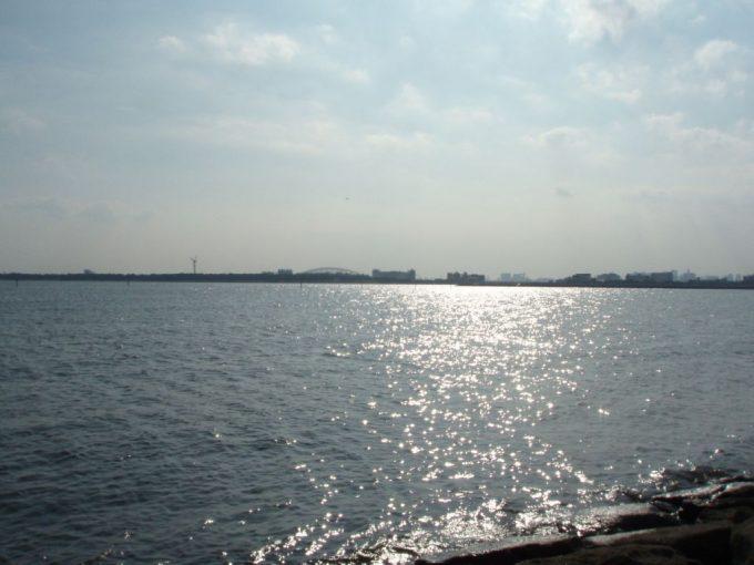 葛西臨海公園西なぎさ園地の煌めく海