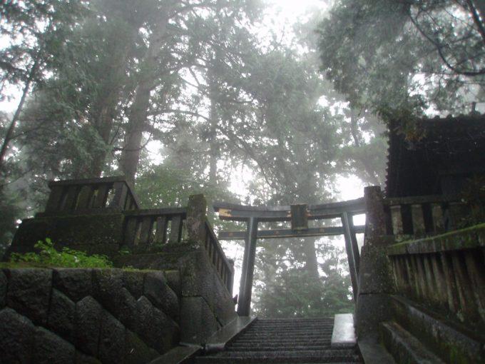 雨にけむる日光東照宮奥宮の鳥居