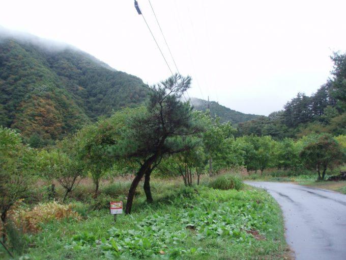 中三依太郎温泉への一本道