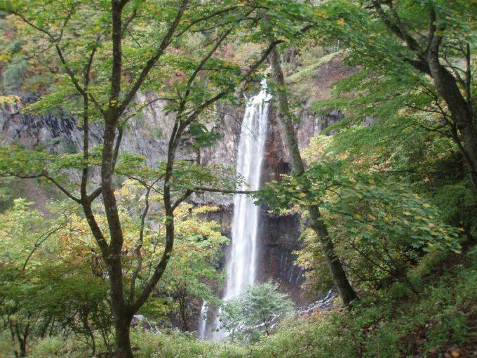 木陰より眺める華厳の滝