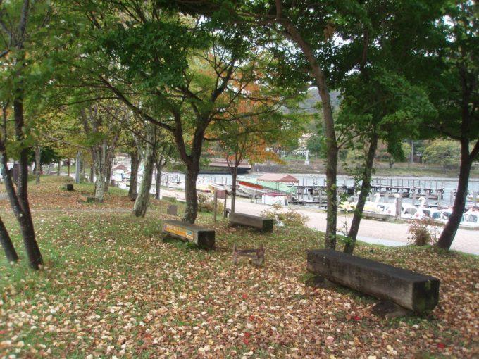 落ち葉の積もる中禅寺湖畔の道