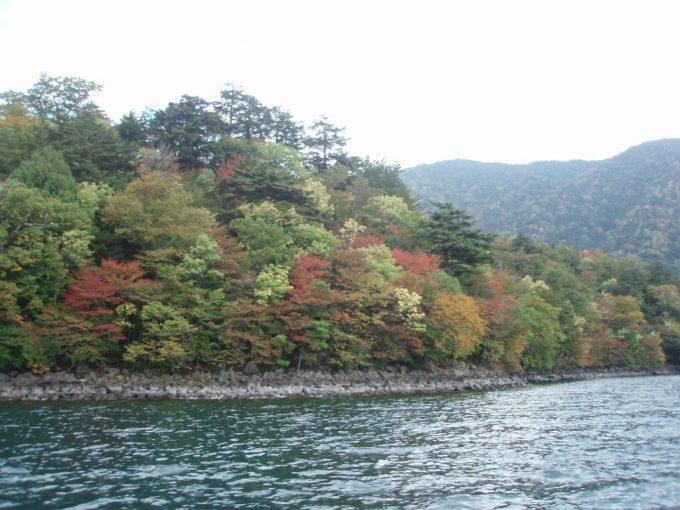 中禅寺湖畔色とりどりの紅葉