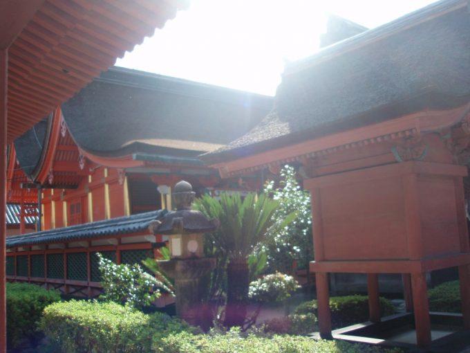 朝日を浴びる伊佐爾波神社のお社