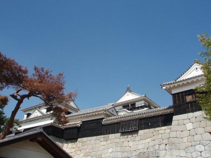 松山城と石垣