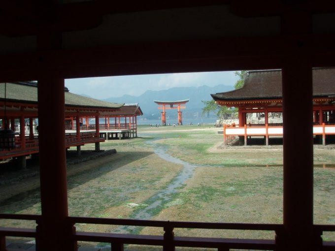 厳島神社社殿内から大鳥居を望む
