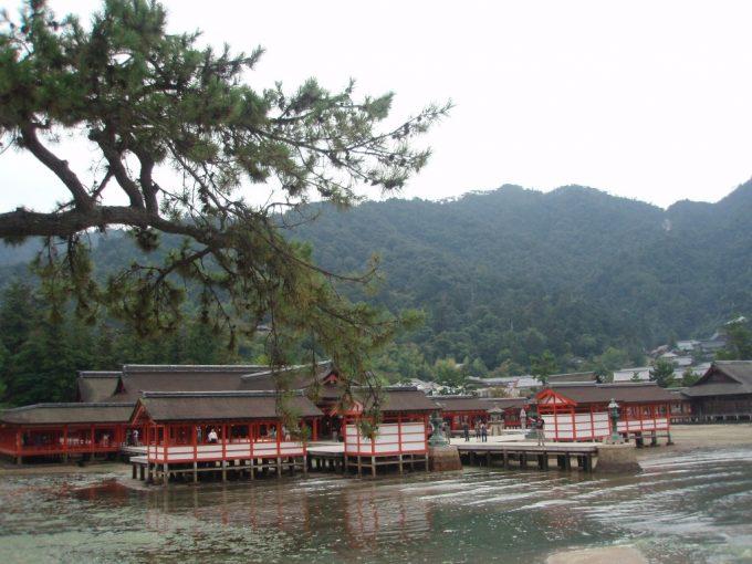 潮が満ちはじめた厳島神社