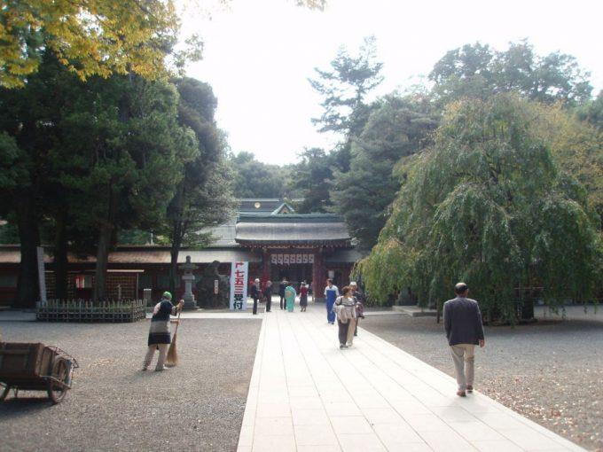 深い森の大国魂神社