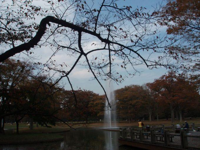 秋色の代々木公園噴水