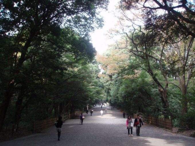 秋の明治神宮参道