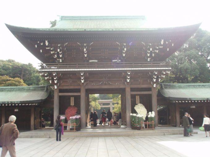 秋の明治神宮門と菊