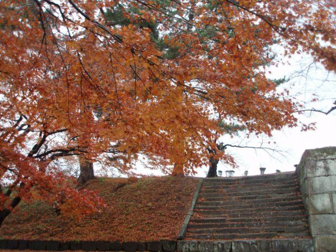鶴ヶ城雨に濡れる石垣と紅葉