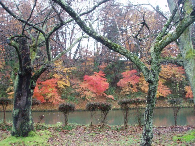 鶴ヶ城のお堀見事な紅葉
