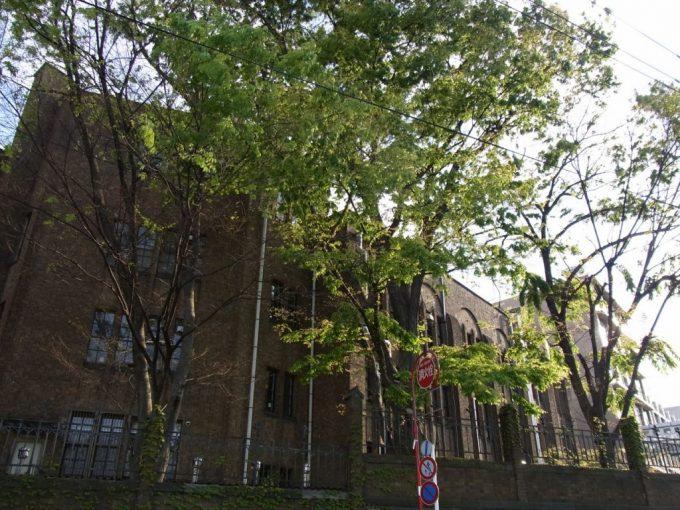 東大の古い校舎
