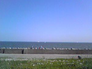 若洲海浜公園からの海原
